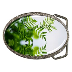 Leafs With Waterreflection Belt Buckle (Oval)
