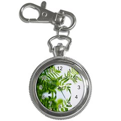Leafs With Waterreflection Key Chain & Watch