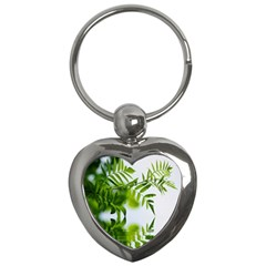 Leafs With Waterreflection Key Chain (Heart)