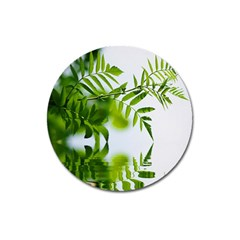 Leafs With Waterreflection Magnet 3  (Round)