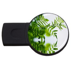 Leafs With Waterreflection 4GB USB Flash Drive (Round)