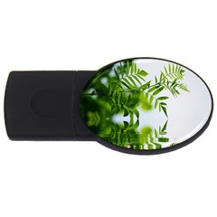 Leafs With Waterreflection 4GB USB Flash Drive (Oval)