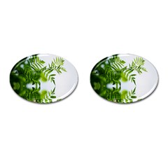 Leafs With Waterreflection Cufflinks (Oval)