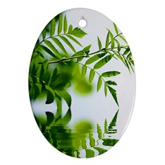 Leafs With Waterreflection Oval Ornament (Two Sides)