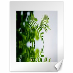 Leafs With Waterreflection Canvas 36  x 48  (Unframed)