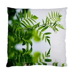 Leafs With Waterreflection Cushion Case (single Sided)