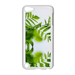 Leafs With Waterreflection Apple Ipod Touch 5 Case (white)