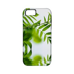 Leafs With Waterreflection Apple Iphone 5 Classic Hardshell Case (pc+silicone)
