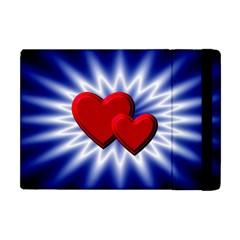 Love Apple iPad Mini Flip Case