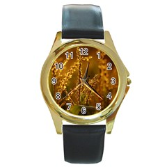 Field Round Metal Watch (gold Rim)
