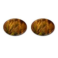 Field Cufflinks (oval)