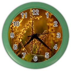 Field Wall Clock (Color)