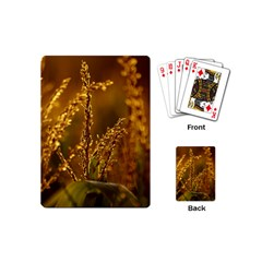 Field Playing Cards (Mini)