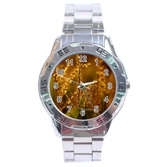Field Stainless Steel Watch (Men s)