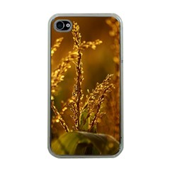 Field Apple iPhone 4 Case (Clear)
