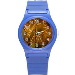 Field Plastic Sport Watch (Small)