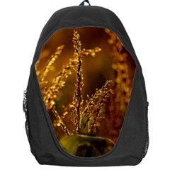 Field Backpack Bag