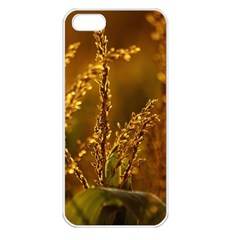 Field Apple iPhone 5 Seamless Case (White)