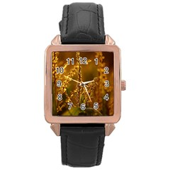 Field Rose Gold Leather Watch