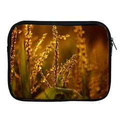 Field Apple iPad 2/3/4 Zipper Case