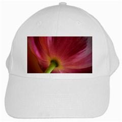 Poppy White Baseball Cap
