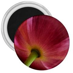 Poppy 3  Button Magnet