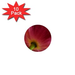 Poppy 1  Mini Button (10 pack)