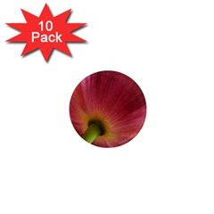 Poppy 1  Mini Button Magnet (10 pack)