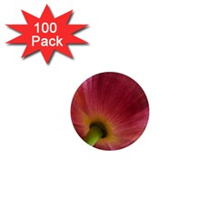 Poppy 1  Mini Button Magnet (100 Pack)