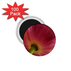 Poppy 1.75  Button Magnet (100 pack)