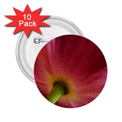 Poppy 2 25  Button (10 Pack)