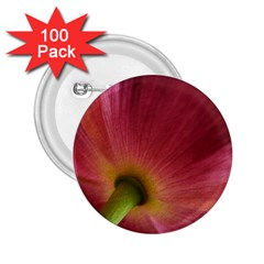 Poppy 2 25  Button (100 Pack)