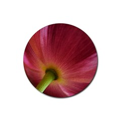 Poppy Drink Coasters 4 Pack (Round)