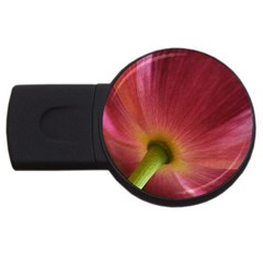 Poppy 2gb Usb Flash Drive (round)