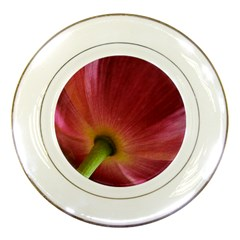 Poppy Porcelain Display Plate