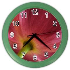 Poppy Wall Clock (Color)