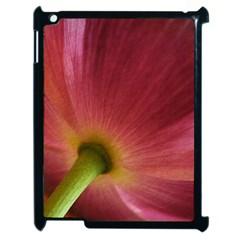 Poppy Apple Ipad 2 Case (black)