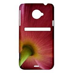 Poppy HTC Evo 4G LTE Hardshell Case
