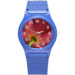 Poppy Plastic Sport Watch (Small)