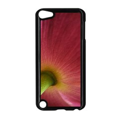 Poppy Apple iPod Touch 5 Case (Black)