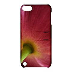 Poppy Apple iPod Touch 5 Hardshell Case with Stand