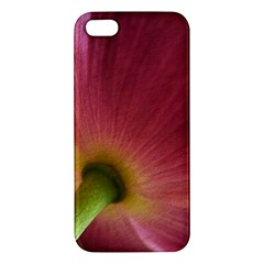 Poppy iPhone 5S Premium Hardshell Case