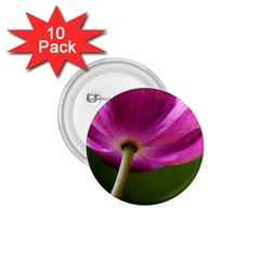 Poppy 1.75  Button (10 pack)