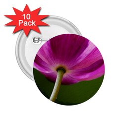 Poppy 2.25  Button (10 pack)