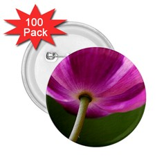 Poppy 2.25  Button (100 pack)