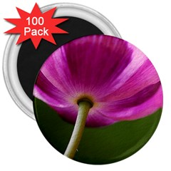 Poppy 3  Button Magnet (100 pack)