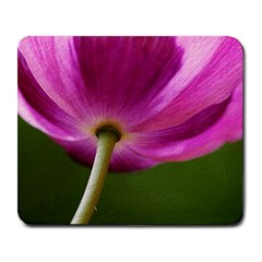 Poppy Large Mouse Pad (Rectangle)