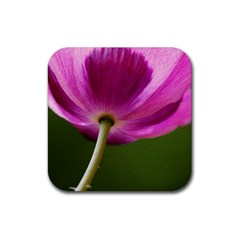 Poppy Drink Coaster (Square)