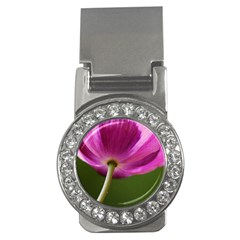 Poppy Money Clip (CZ)