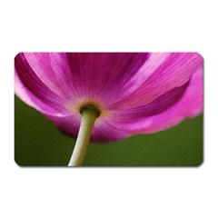 Poppy Magnet (rectangular)